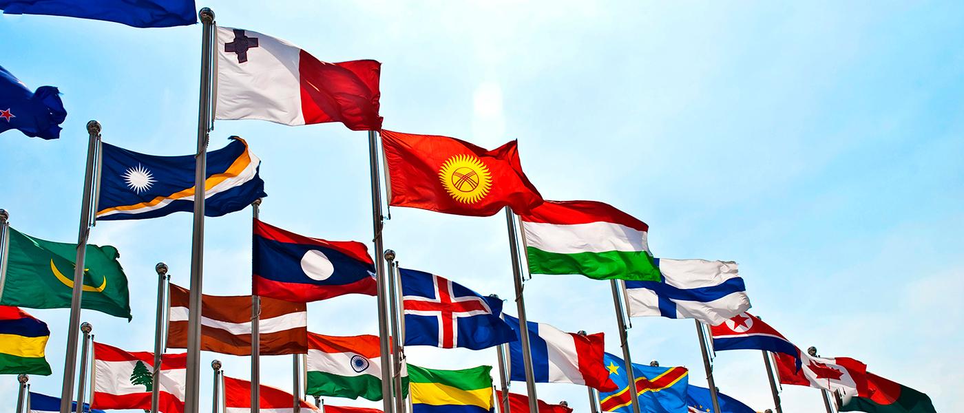 международное образование