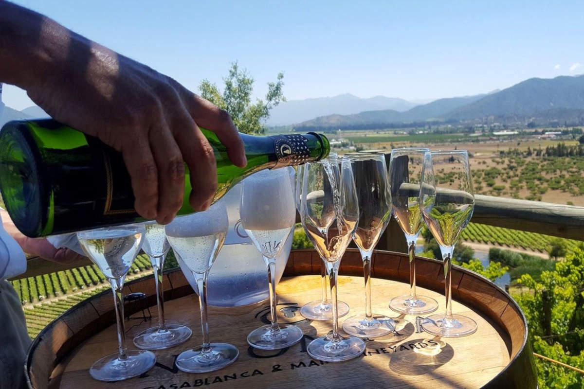 туры с дегустацией вин